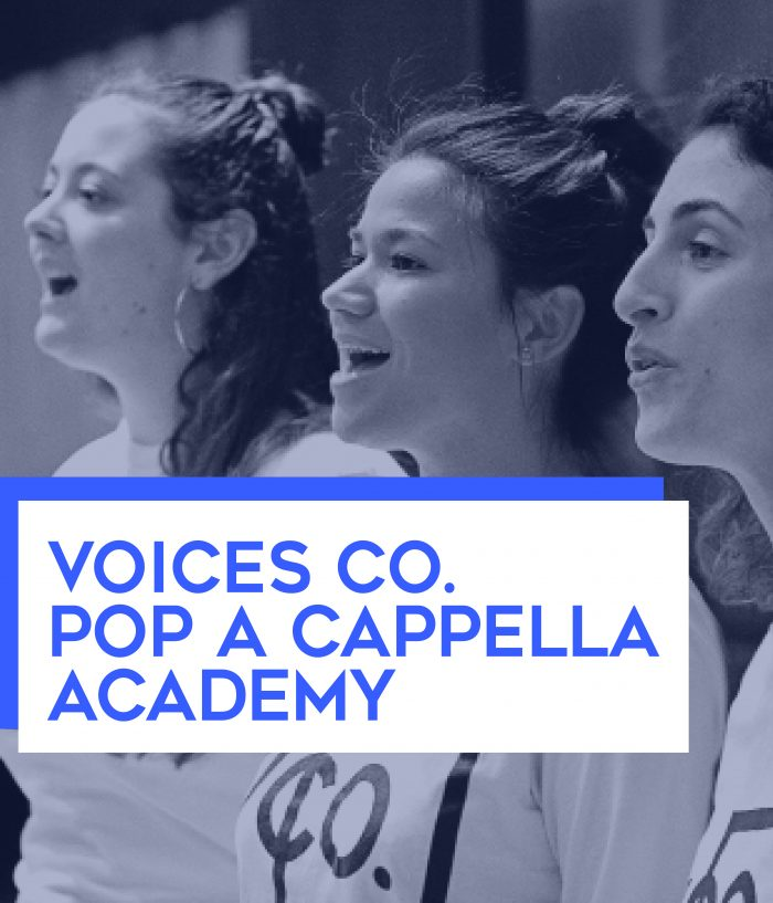 Voices Co. Academy