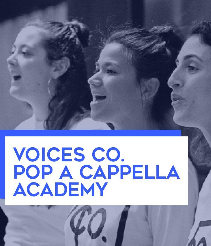 Voices Co. Academy