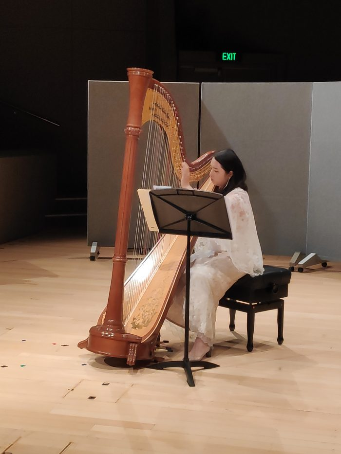 Harpistina Studio